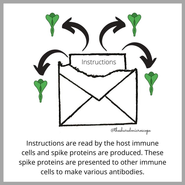 ilustración de la vacuna Moderna