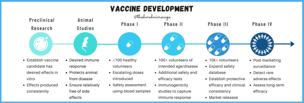 illustration of the timeline of preclinical and clinical trials phases for vaccine development and regulatory approval