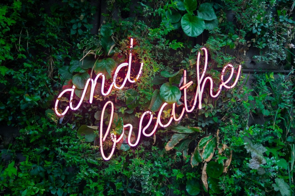 "neon sign that says ""and breathe"""