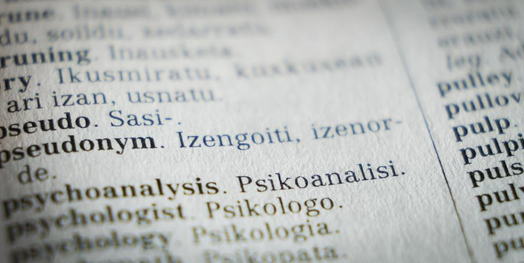 image of words and their translations in a book